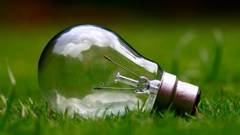 Image of lightbulb on grass to represent a sustainable events industry